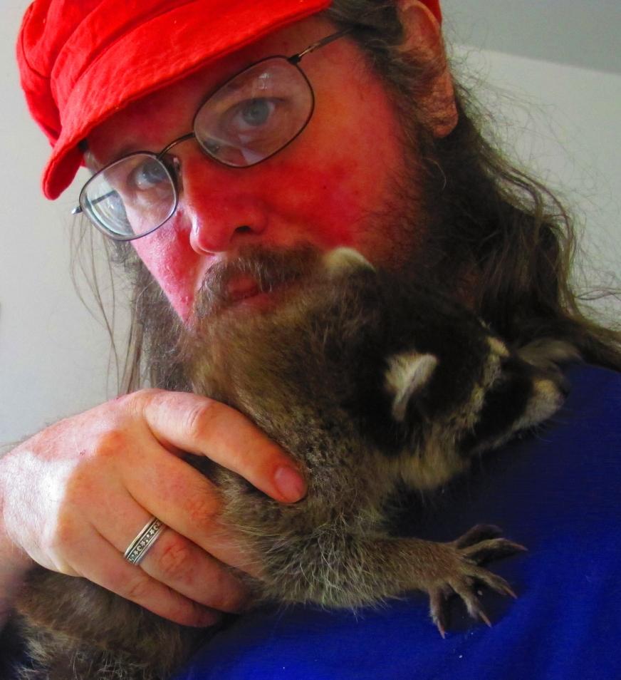 Feisty Little Raccoon 3 by Windthin
