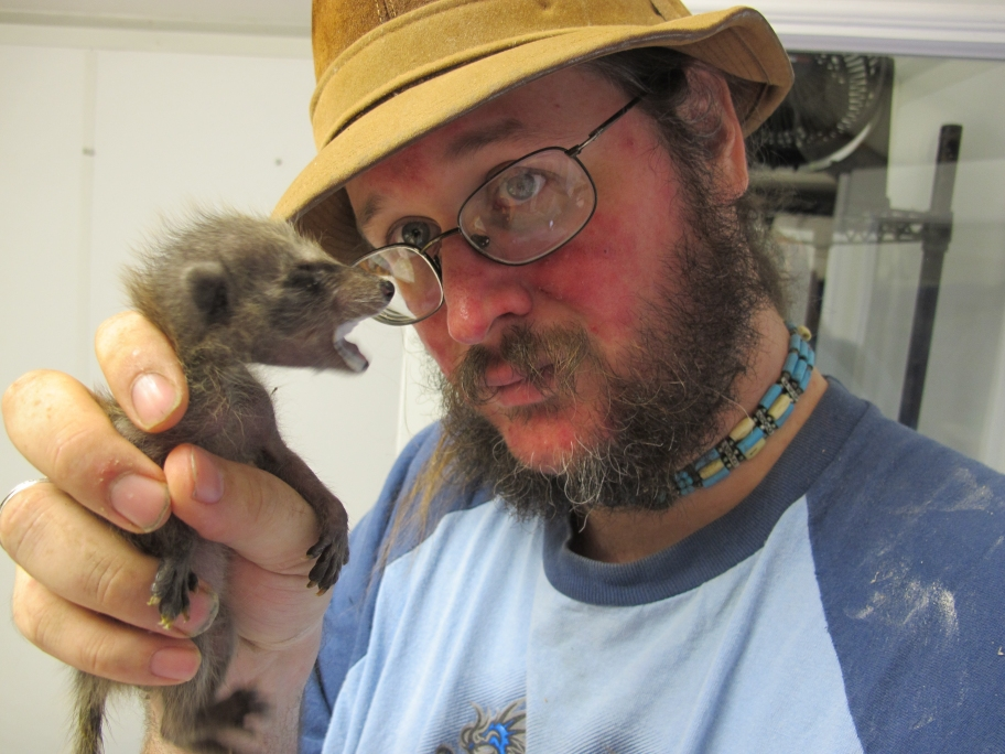 Tiny Raccoon 5 by Windthin