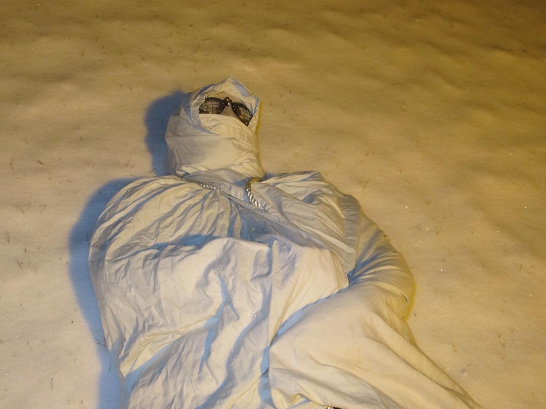 Snowbound 18 by Windthin