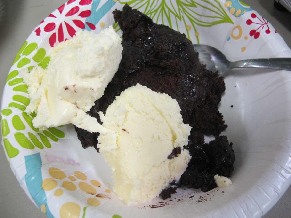Fudgy Ice Cream Cake Recipe — Dishmaps