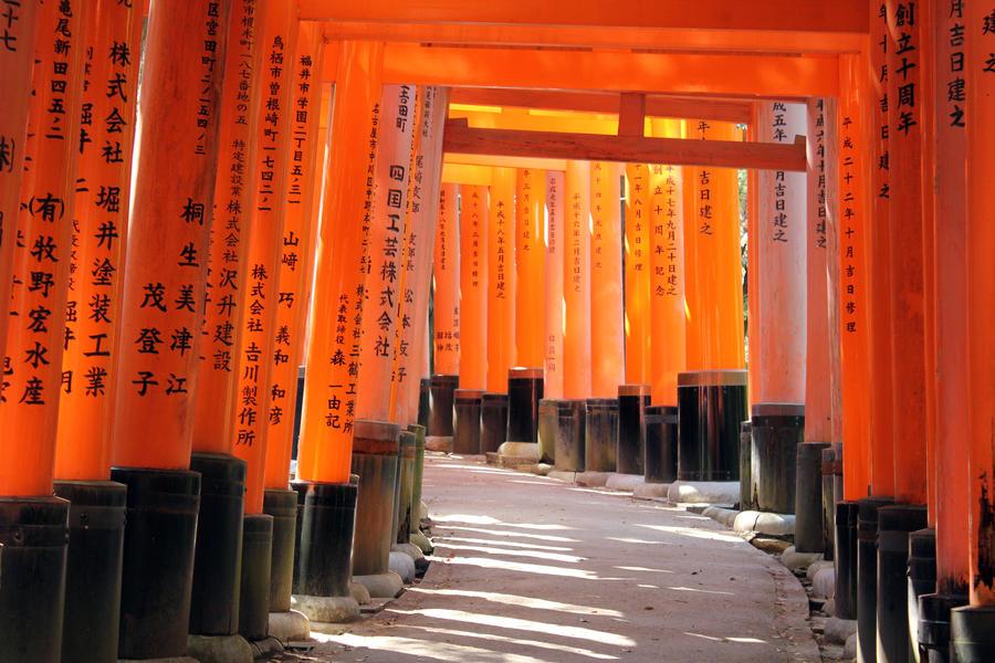 Fushimi Inari in the Sunlight by firenze-design