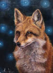 Fox, Daily painting