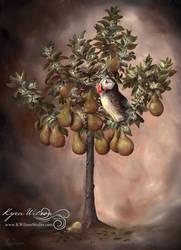 Puffin in a Pear Tree