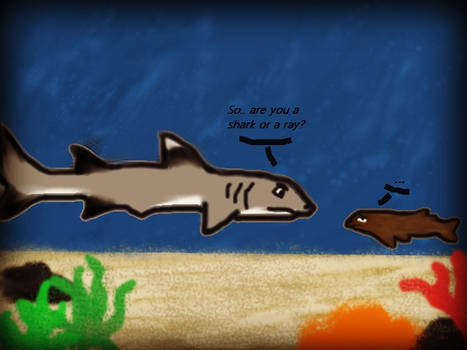 So.. are you a shark or a ray? Shark Week 2012