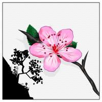 Sacura flower (color lineart)