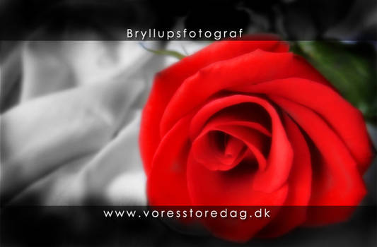 bryllupsfotograf VoresStoreDag