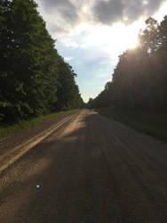 Road by DatFox273