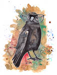 A clever crow