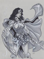 Wonder Woman in Armor by MichaelDooney