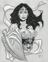 Wonder Woman ECCC 2014 by MichaelDooney