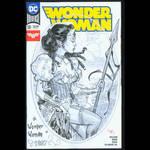 Wonder Woman 1887 cover