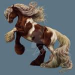 Gypsy - Horse