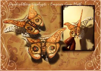 Emperor Gum Moth Papercut by Darya87