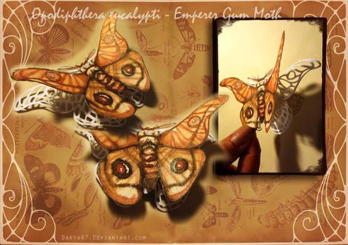 Emperor Gum Moth Papercut