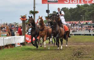 Roman Riding 2
