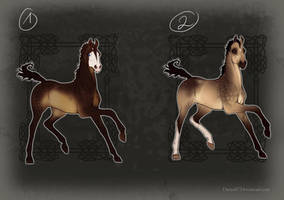 Sooty Buckskin Design  - PRICES LOWERED