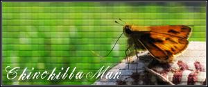 Butterfly Baseball Signature by Chinchilla-Man