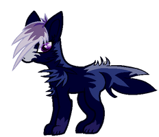 Stella the fox