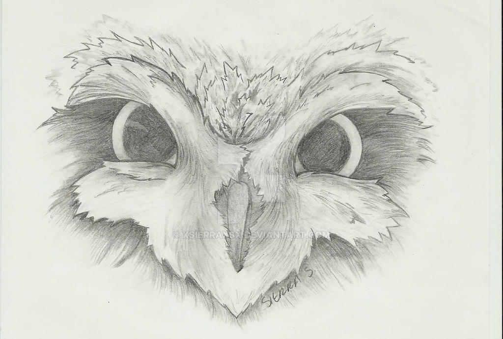 owl face by xsierraxsx on deviantart