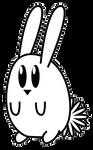 Conejo-del-dia