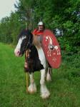 Durnacos the gaulish cavalryman