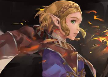 botw2 - Zelda by blazpu