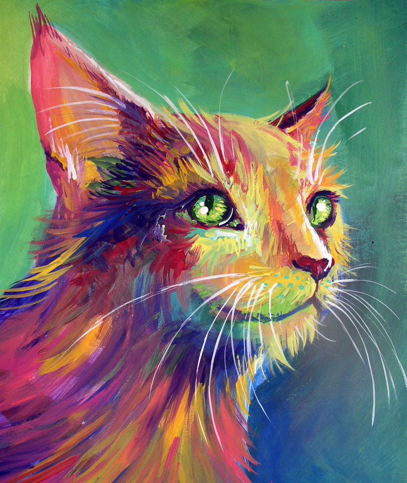 Colorful Cat 3 by San-T on DeviantArt Colorful Art