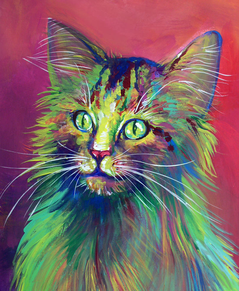 Colorful Cat 5 by San-T on DeviantArt