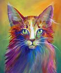 Colorful Cat 6