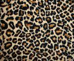 Leopard tex II