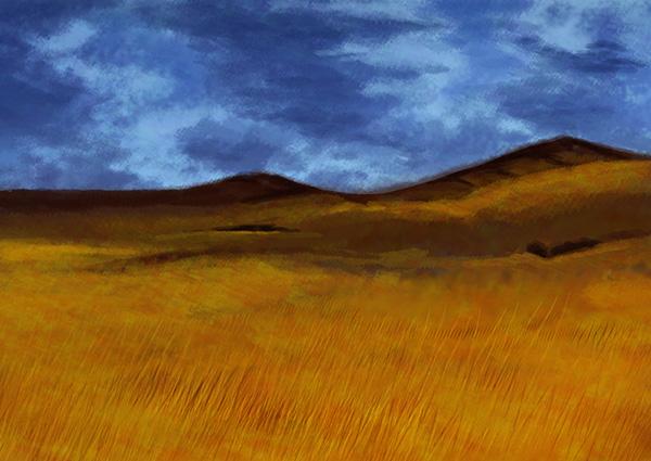 Field by saito20