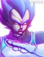 Vegeta Super Saiyan God by HentaiChimp