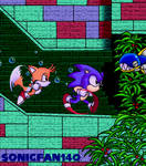 Sonic and Tails Aquatic Ruin