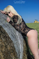 Bent on a Hay Bale