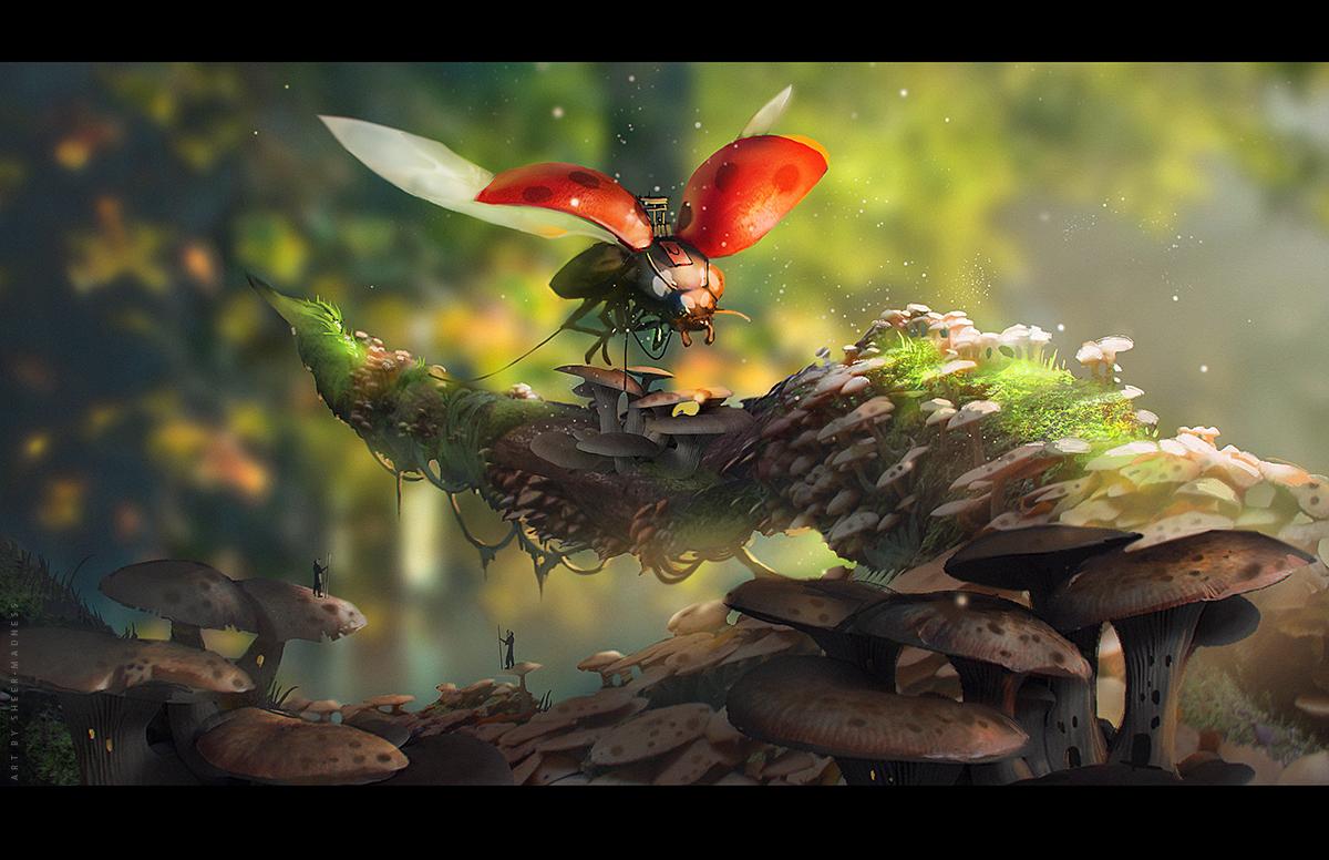 Mushrooms by sheer-madness