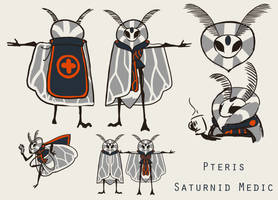 Dungeons and Dragons - Pteris Concept