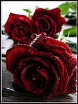 Blood Rose Trilogy by TSVN
