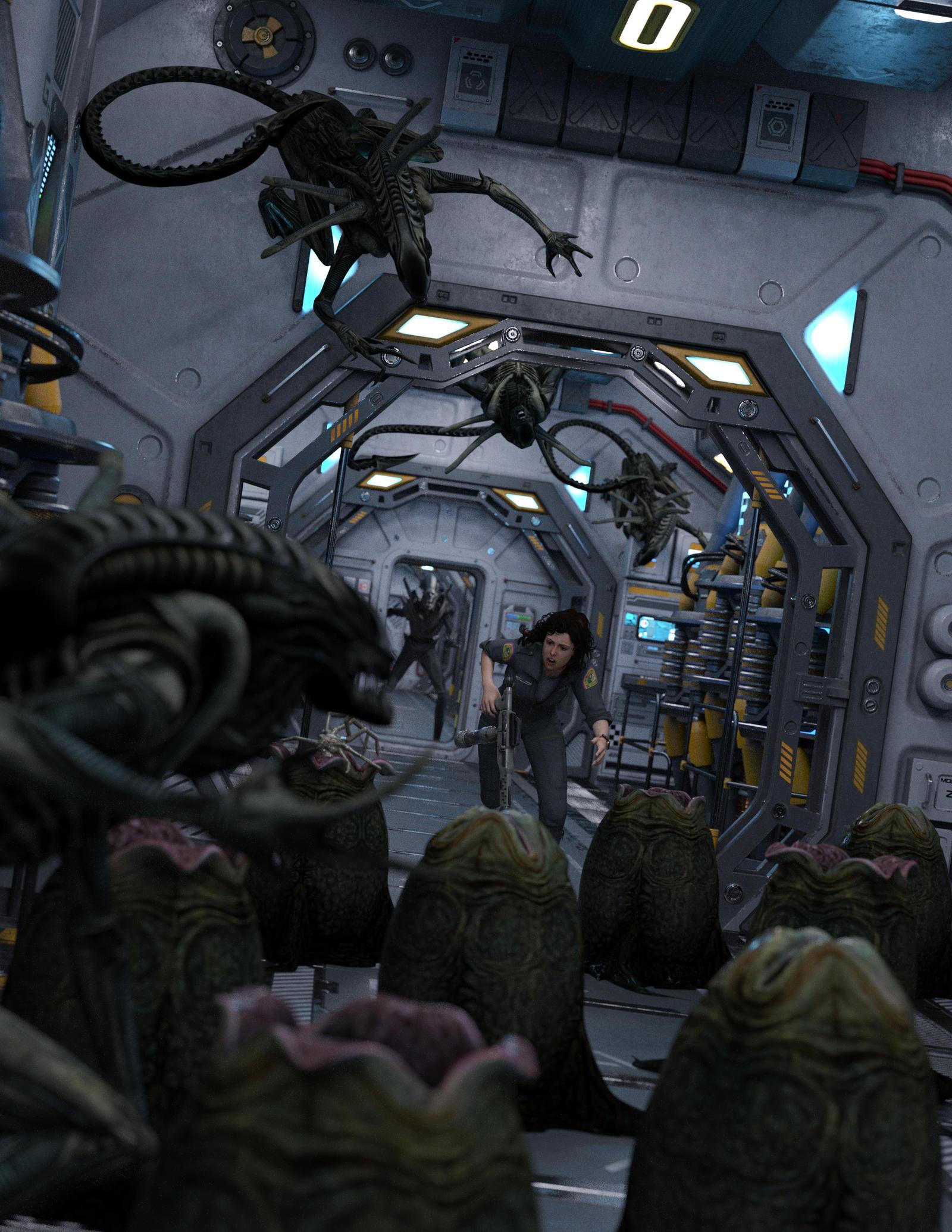 Ripley's Run