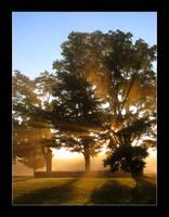 light rays 4 by gavinsartwork