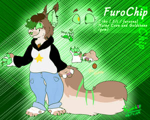 Furochips new better ref