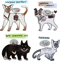 (closed) cat adoptables by alaskii