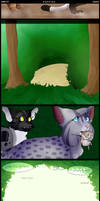 poppies | page 10