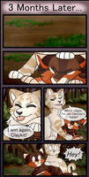 poppies | page 19