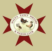 Malta Fancy Poultry and Pigeon Club by Faunamelitensis