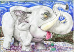 Infant elephant