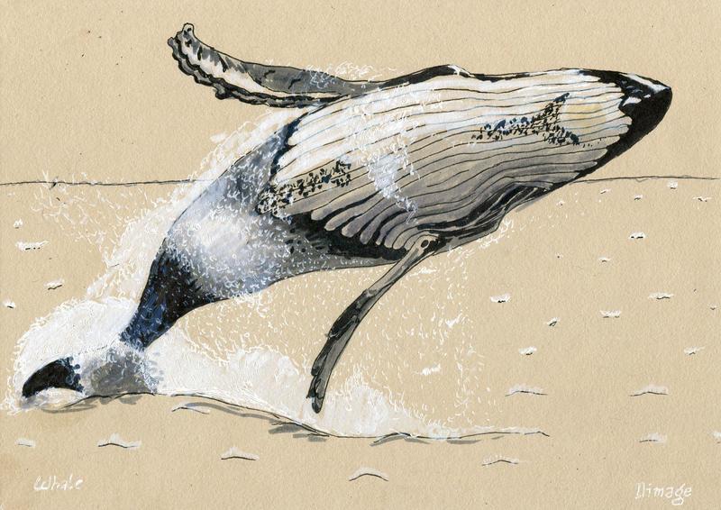 Inktober 2018 - whale