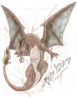 Charizard by 5-D