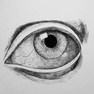 oog #7