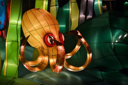 Octopus of light