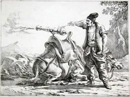Camel artillery